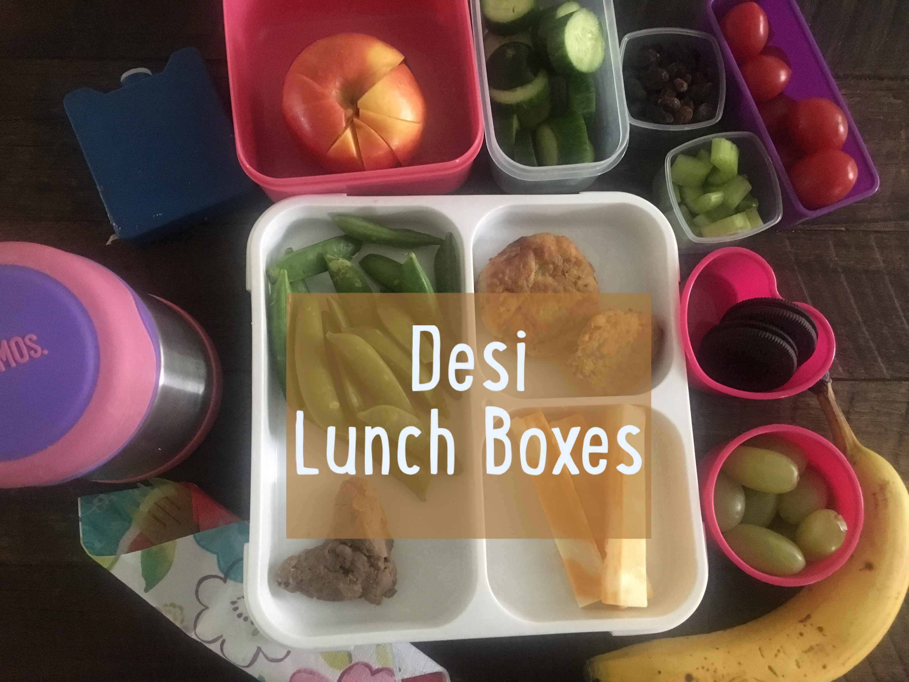 desi lunch box